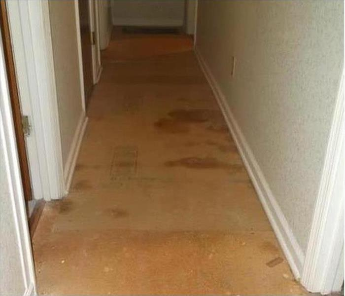 Water Damage to a Hallway in Mansfield,Ohio