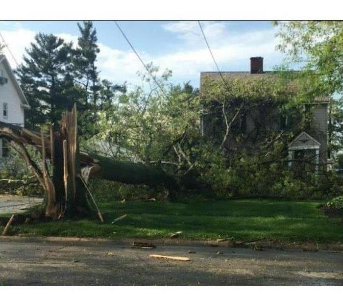 Storm Damage Cleanup and Restoration