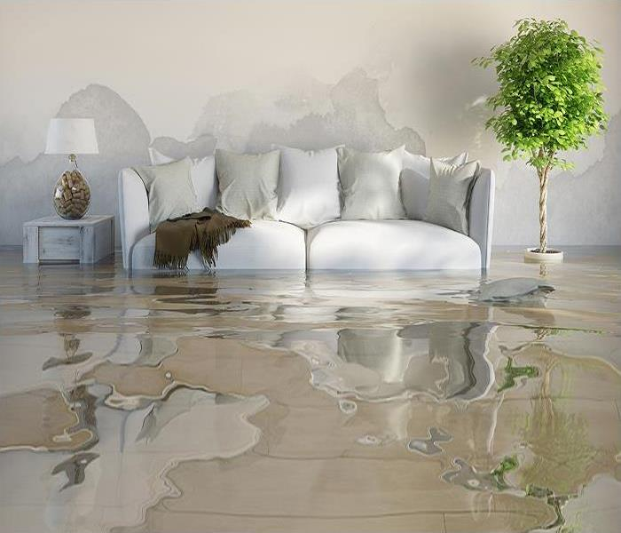 Water Damage Who to Call After Water Damage In Your Home