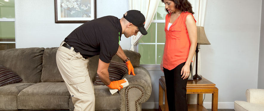 Mansfield, OH carpet upholstery cleaning